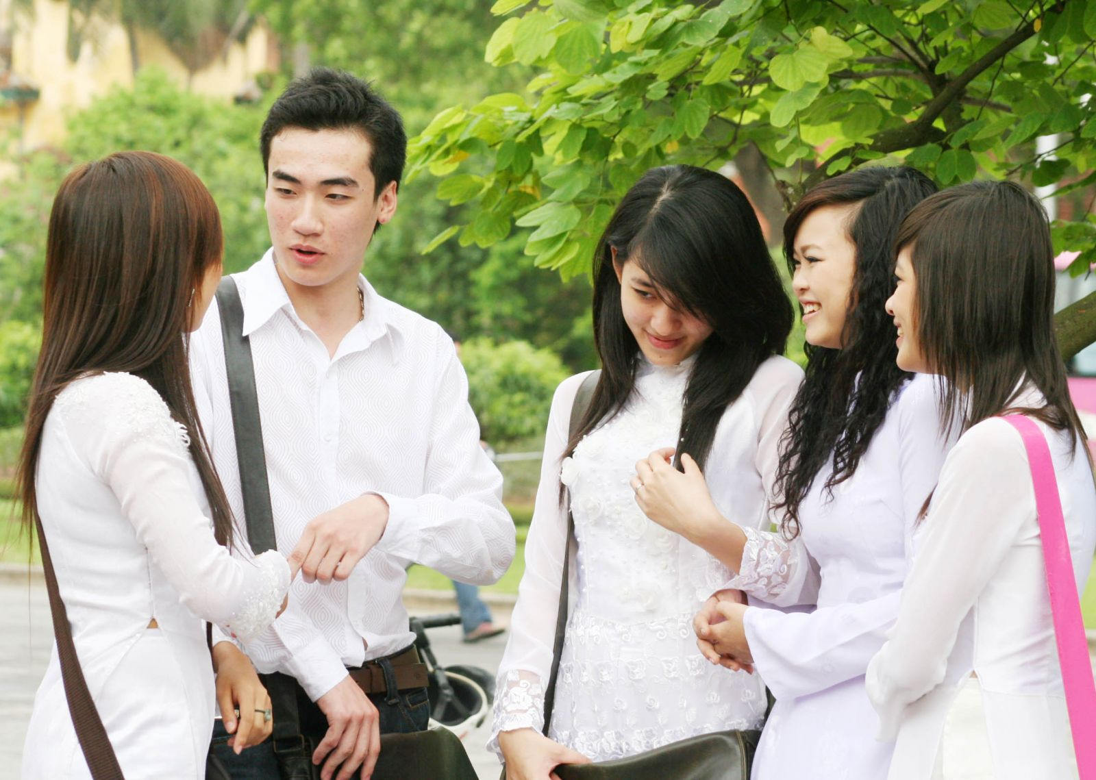 Language of Vietnamese Teen